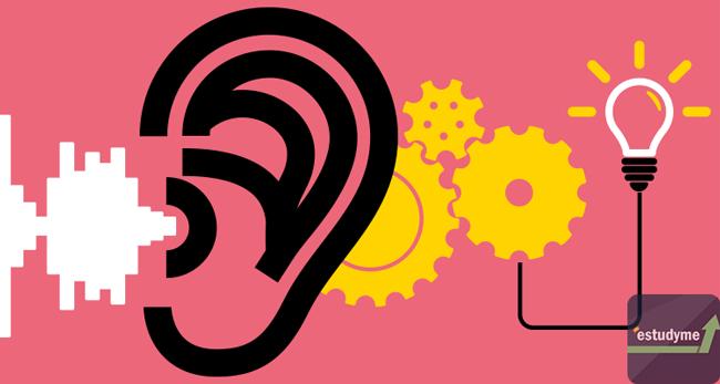 ôn phần nghe ielts hiệu quả
